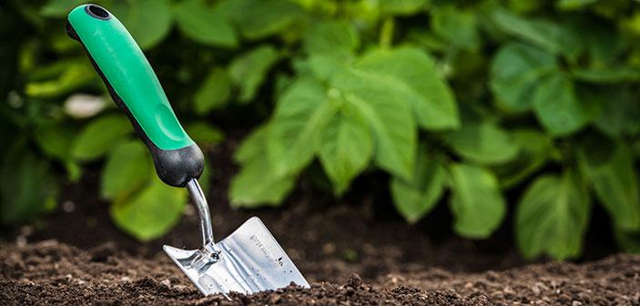 bliv-havemand-i-egen-have-og-kombiner-sport-og-fritid-bredformat-rigtige