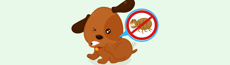 Beskyt dine kæledyr mod lopper