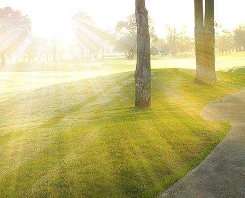 bliv en god golfspiller saadan her