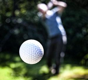 find din golf bold her